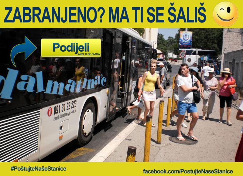 Dalmatinac neovlašteno staje na gradskim autobusnim stanicama